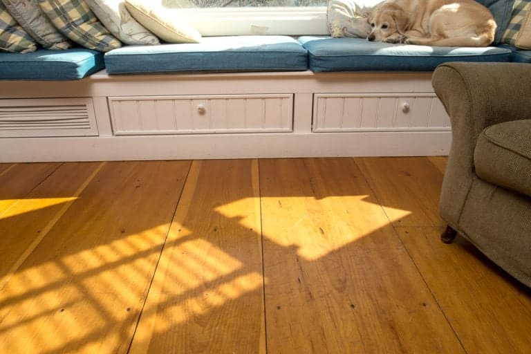 wide plank flooring with sleepy dog resting on couch
