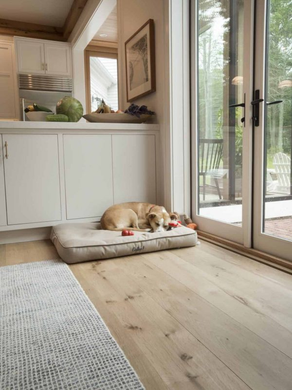 dog sleeping on country white oak wide plank floor
